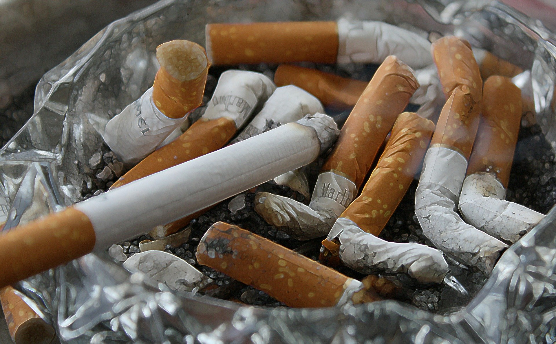 akcyza na papierosy