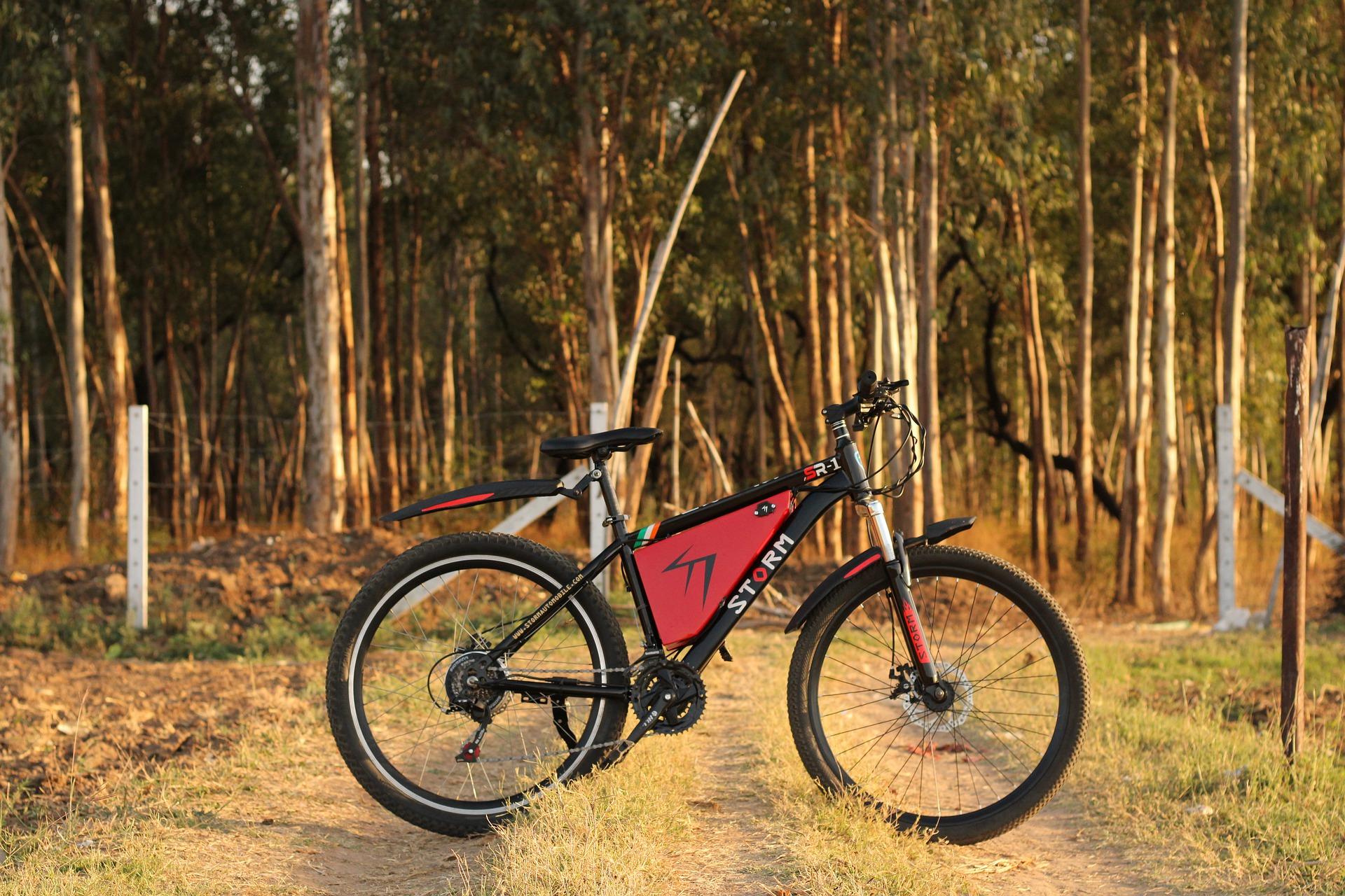 dopłata do roweru elektrycznego